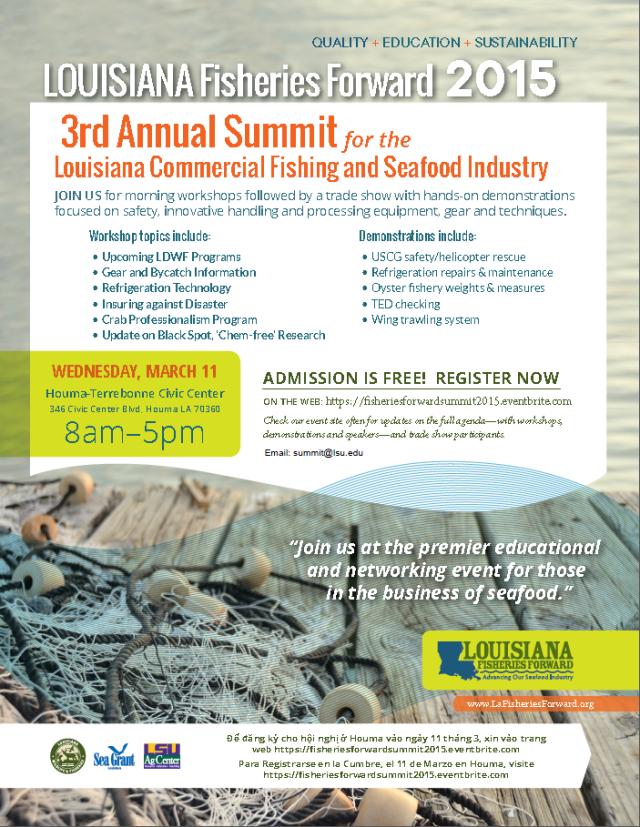 lff-summit-2015_flyer